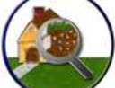 Annual Termite Inspection or Pest Control Inspection